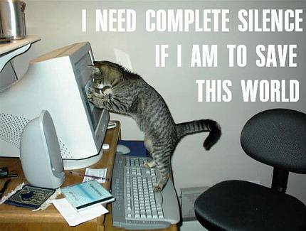 gatos-informatica10