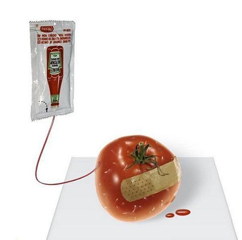 Transfusión de sangre a un tomate herido 3