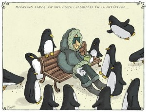 humor pinguinos