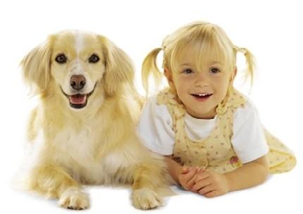 perros parecidos dueños