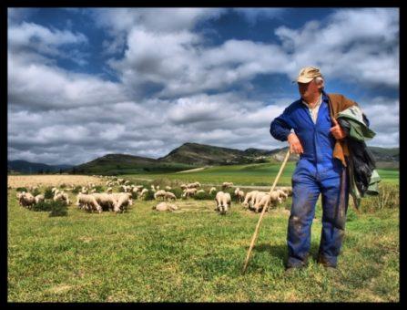 pastores modernos