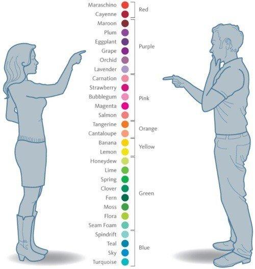 diferencias entre hombres y mujeres 2